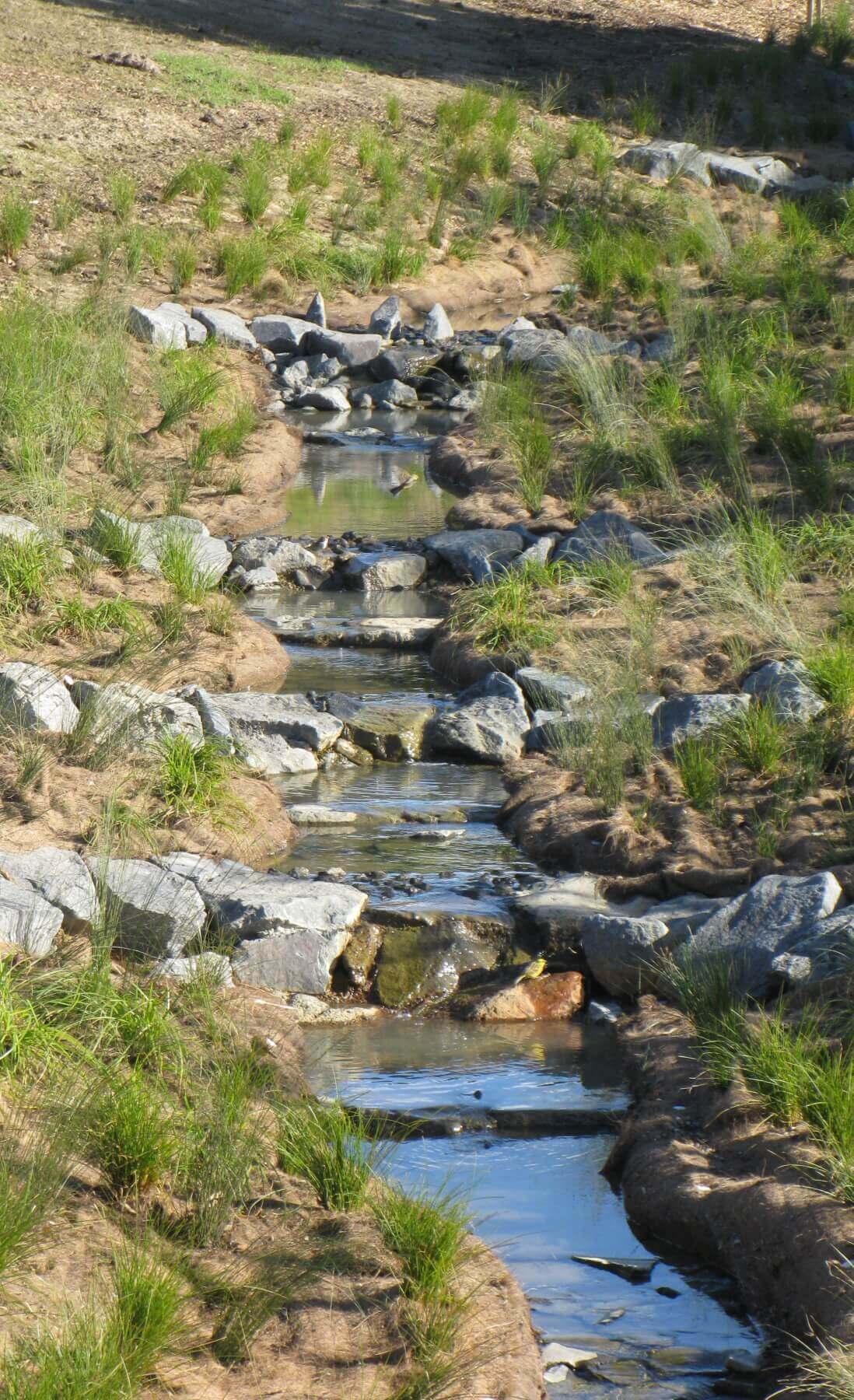 BioCoir Stream