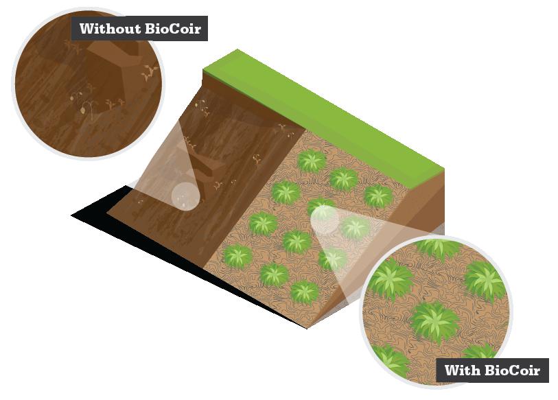 biocoir-comparison