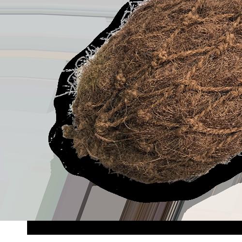 coir-log-product